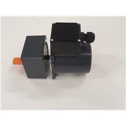 Luftmiljö REGO 0250-F-C2 rotormotor med växelhus